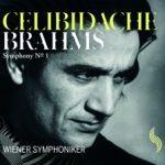 Wiener Symphoniker - Johannes Brahms - Symphony No. 1